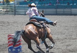 Cavalli: gare di monta western