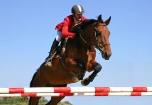 Cavallo, il salto ad ostacoli