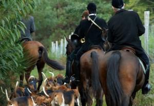 La caccia a Cavallo