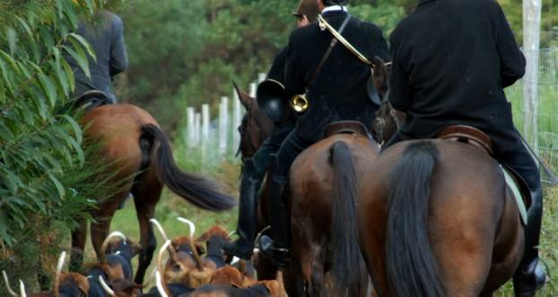 la_caccia_a_cavallo_910_630