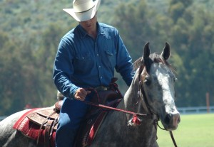 equitazione - tipi di monta: la monta americana western