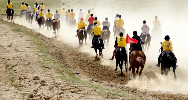 Sport con i Cavalli