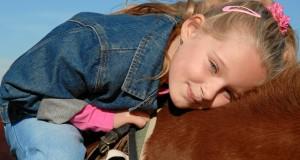 Horse Sheen, un prodotto utile per mantenere brillante manto e crini