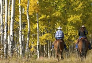 organizzazione del trekking a cavallo