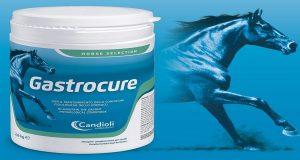 Gastrocure, ottimo prodotto per proteggere la mucosa gastrica dei cavalli