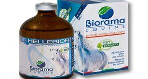 Hellebior Biorama, ottimo prodotto per il rilassamento articolare nei cavalli